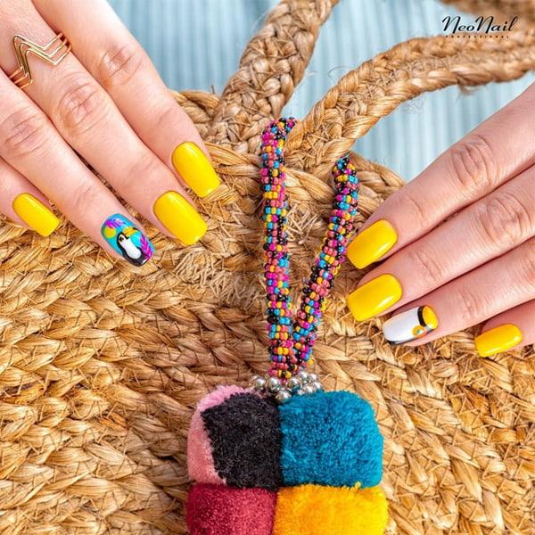 Tukan in Sunmarine-Farben