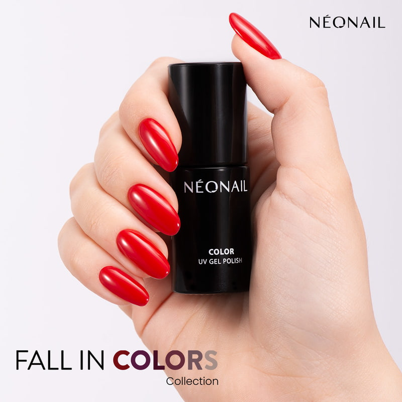 Feminine Grace from Fall in Colors Collection