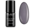 UV Nagellack 6 ml - Silver Grey